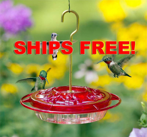 Ships Free! Aspects 382 Little Fancy Hummingbird Feeder ~ Rose
