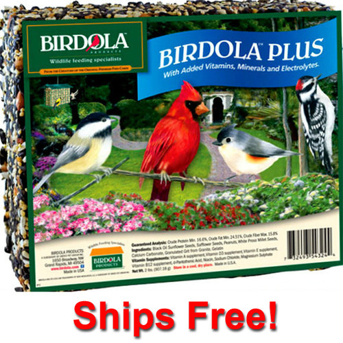 Ships Free! Birdola Plus Seed Cake