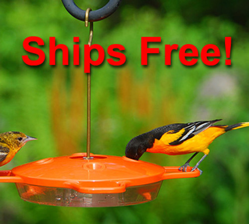 Ships Free! Aspects 361 Oriole Feeder