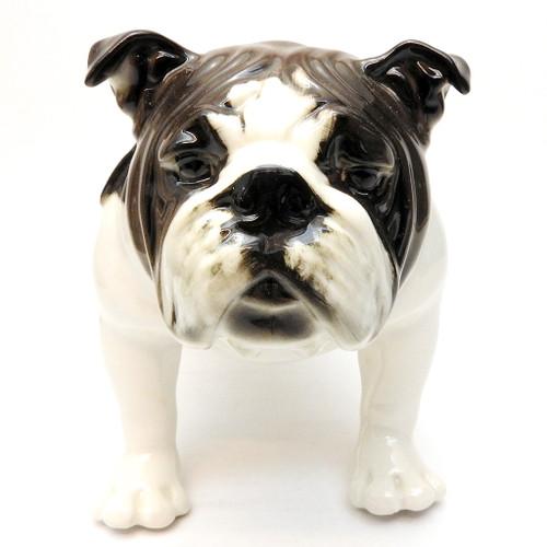 Bulldog [Lomonosov]