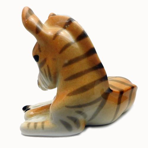 Baby Zebra [Lomonosov]