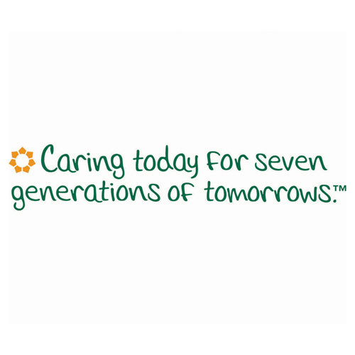 Seventh Generation 100  Recycled Napkins  1-Ply  12 x 12  Unbleached  500 Pack  12 Packs Carton (SEV 13705)