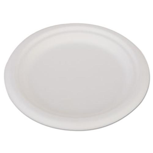 SCT ChampWare Heavyweight Bagasse Dinnerware  Plate  6   White  1000 Carton (SCH 18110)