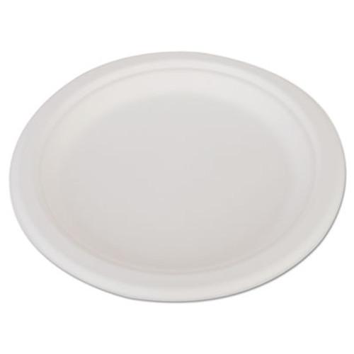 SCT ChampWare Heavyweight Bagasse Dinnerware  Plate  9   White  500 Carton (SCH 18140)