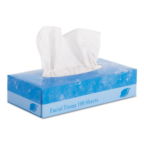 GEN Facial Tissue   2-Ply  White  Flat Box  100 Sheets Box  30 Boxes Carton (GEN 6501)