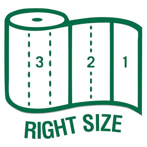 Seventh Generation 100  Recycled Paper Towel Rolls  2-Ply  11 x 5 4 Sheets  156 Sheets RL  8 RL PK (SEV 13739)