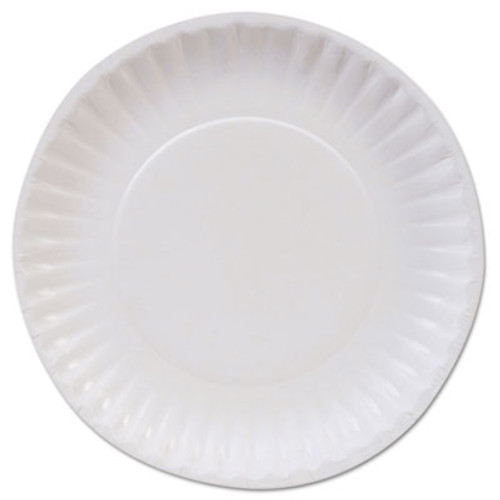 Dixie Basic Clay Coated Paper Plates  6   White  100 Pack (DIX DBP06W)