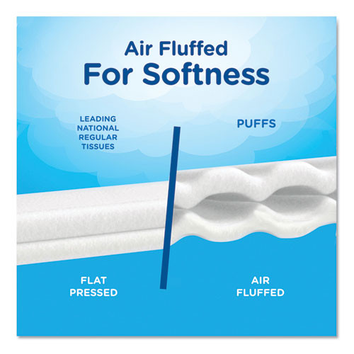 Puffs Plus Lotion Facial Tissue  2-Ply  White  116 Sheets Box  3 Boxes Pack  8 Packs Carton (PGC82086CT)