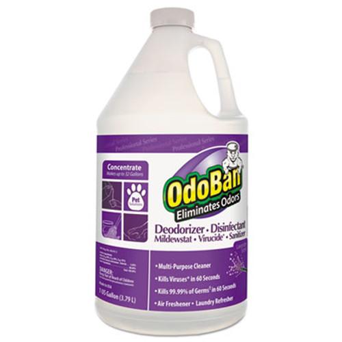 OdoBan Concentrate Odor Eliminator and Disinfectant  Lavender Scent  1 gal Bottle  4 Carton (ODO911162G4)