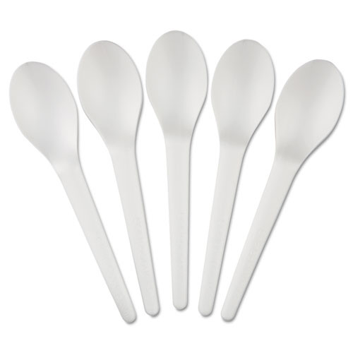 Eco-Products Plantware Compostable Cutlery  Spoon  6   Pearl White  50 Pack  20 Pack Carton (ECOEPS013)