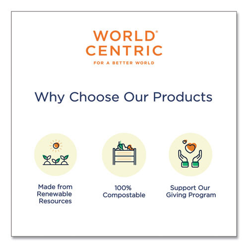 World Centric Fiber Hinged Containers  3 Compartments  8 x 8 x 3  Natural  300 Carton (WORTOSCU8T)