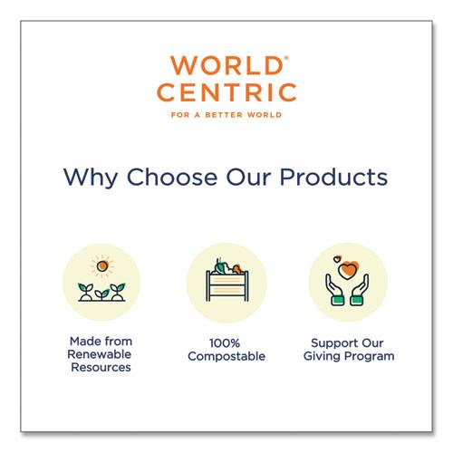 World Centric Fiber Trays  PLA Lined  PFAS Free  9 1 x 7 1 x 0 7  Natural  500 Carton (WORTRSC4SLLF)