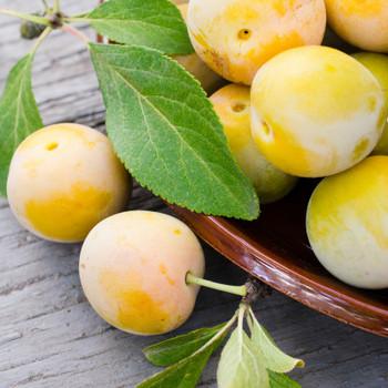 Plums per kg buy fresh fruit and vegetables online Malta
