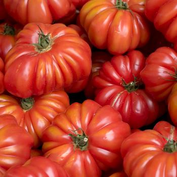 Flat Tomatoes per kg buy fresh fruit and vegetables online Malta