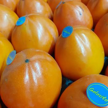 Buy Kaki, fresh fruit and vegetables online in Malta