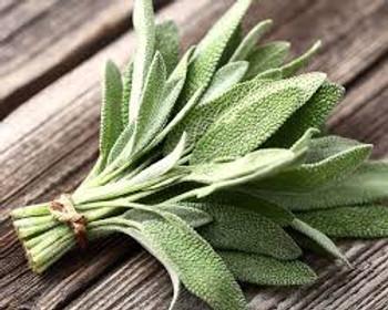 Sage in pot buy fresh fruit and vegetables online Malta
