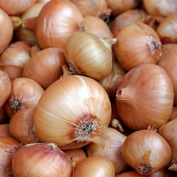 Brown/Yellow Onion buy fresh fruit and vegetables online Malta