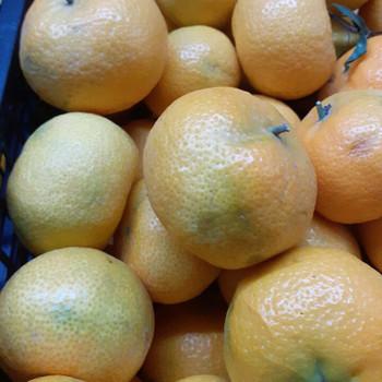 Mandarins per kg