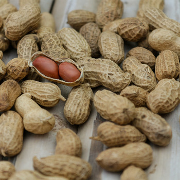 Peanuts raw buy fresh fruit and vegetables online Malta
