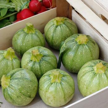 Marrows (Zucchini) per kg buy fresh fruit and vegetables online Malta