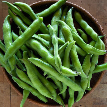 Broad (Fava) Beans per kg buy fresh fruit and vegetables online Malta