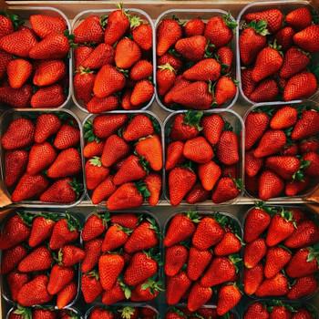 Strawberry Box