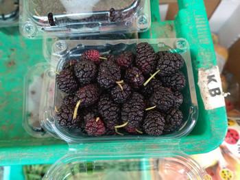 Black Mulberry Cawsli ta'Malta