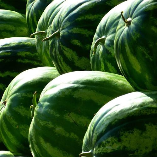 Watermelon per kg buy fresh fruit and vegetables online Malta