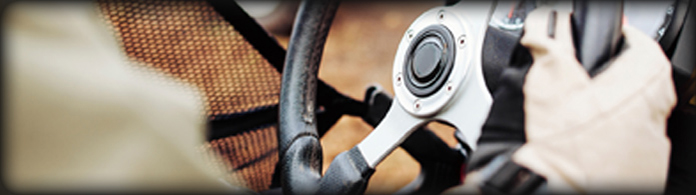 Steering & Pedals