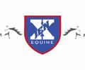 Jen X Equine