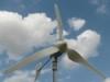 Wind Turbine /w 900 W Peak 600W 24V Power 3 Blades - LIQUIDATION