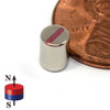 neodymium magnet disc grade N52