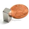 Neodymium Magnet for sale