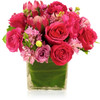 Jewel Box in Pink