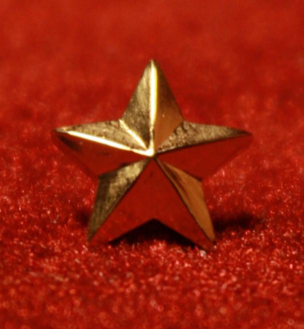 5 Year Membership Star  (Gold)