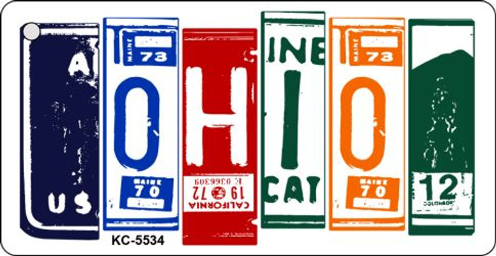 Ohio License Plate Art Metal Novelty Key Chain