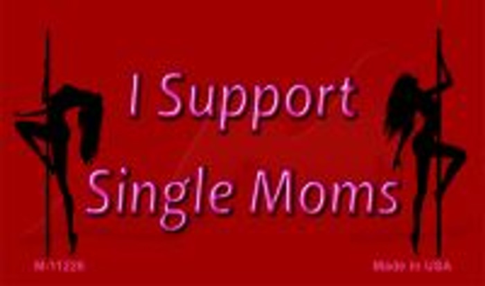 I Support Single Moms Novelty Magnet