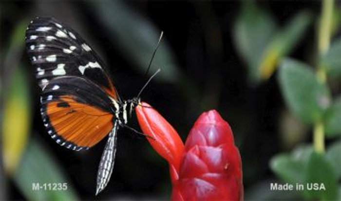 Butterfly On Red Flower Novelty Magnet M-11235