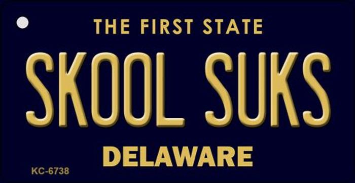 Skool Suks Delaware State License Plate Key Chain KC-6738