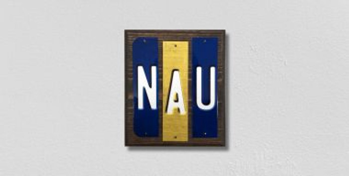 NAU Fun Strips Novelty Wood Signs WS-229