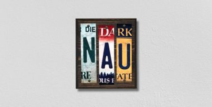NAU License Plate Strips Novelty Wood Signs WS-233