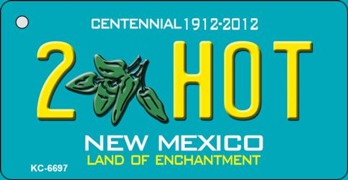 2 Hot Teal New Mexico Novelty Metal Key Chain KC-6697