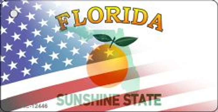 Florida with American Flag Novelty Metal Key Chain KC-12446