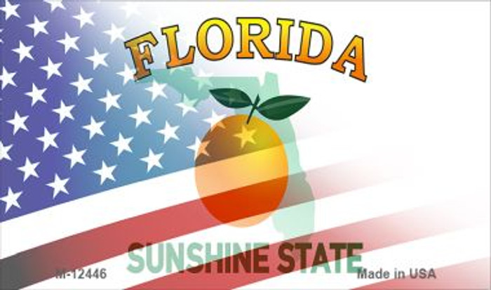 Florida with American Flag Novelty Metal Magnet M-12446