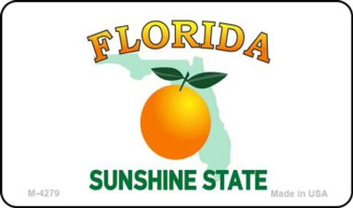 Florida State Background Blank Novelty Metal Magnet M-4279