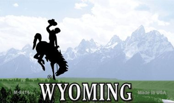 Wyoming State Background Blank Novelty Metal Magnet M-8414