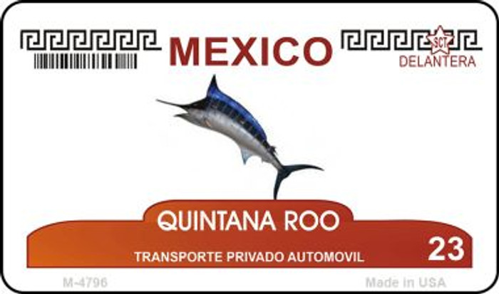 Quintana Roo Mexico Blank Background Novelty Metal Magnet M-4796