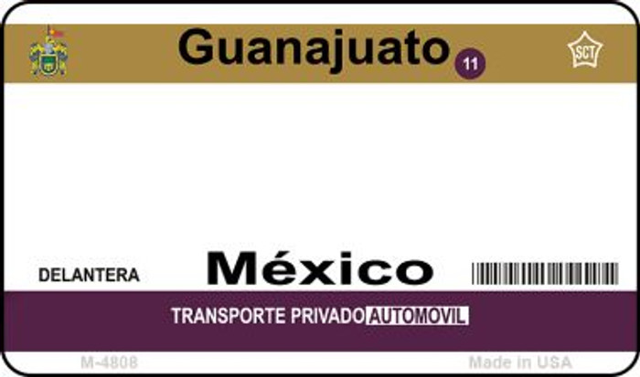 Guanajuato Mexico Blank Background Novelty Metal Magnet M-4808