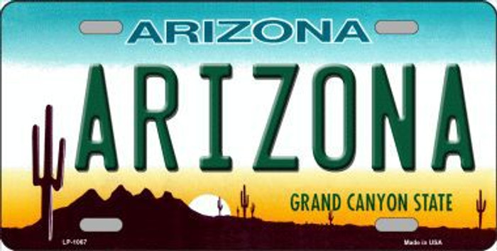 Arizona Novelty Metal License Plate