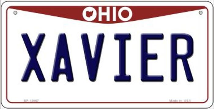 Xavier Novelty Metal Bicycle Plate BP-12967